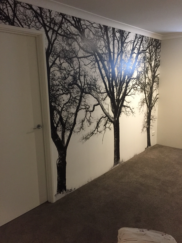 Trees by Mr Wallpaper