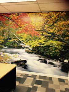 Mural 2 by Mr Wallpaper